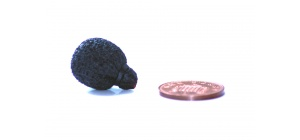 105526_neoprene_coated_mini_lavalier_foam